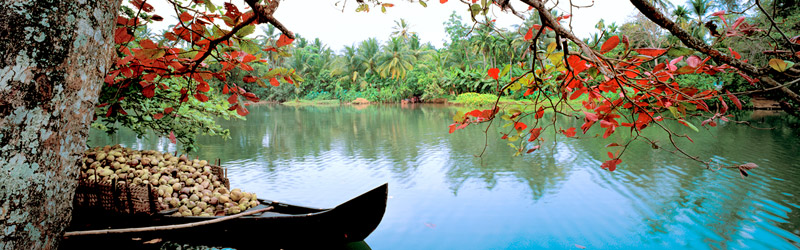 Südindien Backwaters