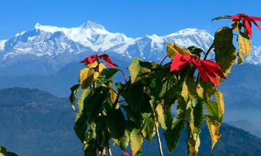 Nordindien - Nepal- Bhutan