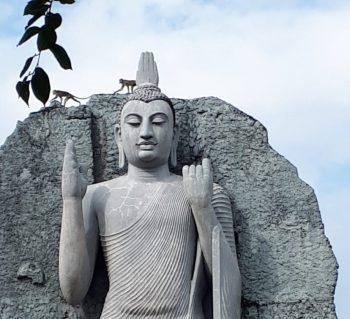 Sri Lanka Klassische Rundreise